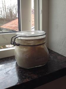 Min surdeg, på sin vanliga plats i fönstret. Där bor den när den är nymatad, som nu, när den halverades och matades för två timmar sedan. I eftermiddag flyttar den in i kylen.