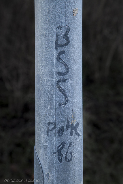 stora pussy.co